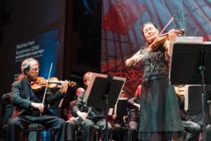 Violinist performing.